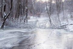 Djupfryst flod i litauisk vildmark Royaltyfria Foton