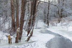 Djupfryst flod i litauisk vildmark Arkivfoton