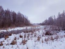 Djupfryst flod med frostblommor Arkivbilder