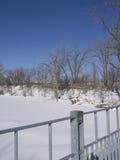 Djupfryst flod och träd i vinter i en parkera Arkivbild