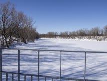 Djupfryst flod och träd i vinter i en parkera Arkivfoto