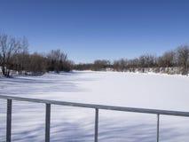 Djupfryst flod och träd i vinter i en parkera Royaltyfria Foton