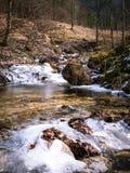 Djupfryst flod på våren arkivbild