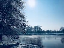 djupfryst flodvinter fotografering för bildbyråer
