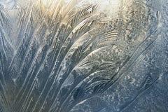 djupfryst glass fönster royaltyfri fotografi