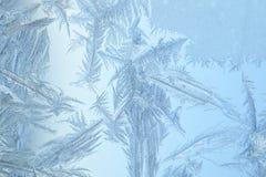 djupfryst glass fönster Fotografering för Bildbyråer