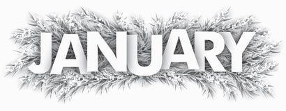 Djupfryst gran fattar Januari royaltyfri illustrationer