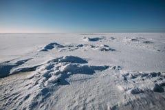 Djupfryst hav på solig vinterdag royaltyfri fotografi