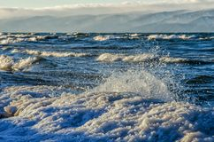 Djupfryst havssikt Vågor som slår den iskalla kustlinjen arkivbild
