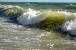 Djupfryst havsvåg fotografering för bildbyråer