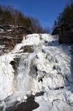 Djupfryst Hector Falls främre sikt royaltyfri fotografi