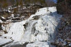 Djupfryst Hector Falls horisontalsidosikt arkivbilder