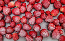 djupfryst jordgubbar Royaltyfri Foto