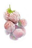 Djupfryst jordgubbar i exponeringsglas Arkivbild
