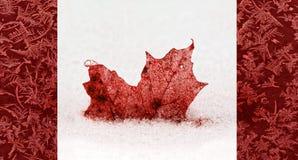 Djupfryst Kanada flaggabegrepp arkivfoton
