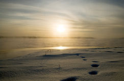 djupfryst lake Royaltyfria Foton