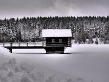 djupfryst lake Royaltyfria Bilder