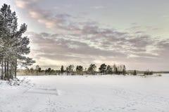 Djupfryst Lake i Inari, Finland Arkivbild