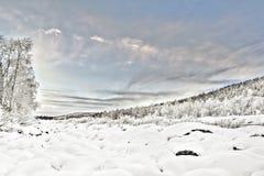 Djupfryst Lake i Inari, Finland Royaltyfria Bilder