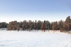 Djupfryst Lake i Inari, Finland Arkivbilder