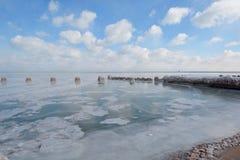 Djupfryst Lakefront Fotografering för Bildbyråer