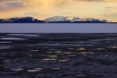djupfryst lakepölar som reflekterar yellowstone Arkivfoton