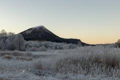 Djupfryst landskap för vinter i Norge royaltyfria foton
