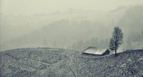 Djupfryst lanscape som är svartvit någonstans över kullarna nära Magura kli Rumänien arkivbilder