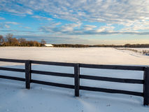 Djupfryst lantgård för häst för staket för vintersnöstång Arkivfoto