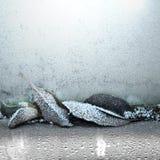 djupfryst leaves stock illustrationer