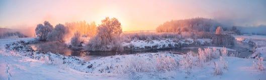 djupfryst natur Arkivbilder