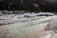 Djupfryst natur nära Garmisch-Partenkirchen, Tyskland Royaltyfri Bild