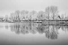 Djupfryst natur vid floden Elbe-Celakovice, tjecktekniker Fotografering för Bildbyråer
