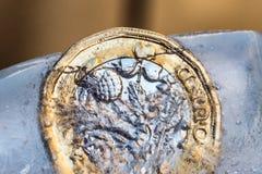 Djupfryst ny britt ett pundmynt upp nära makro inom iskuber Arkivfoto