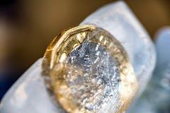 Djupfryst ny britt ett pundmynt upp nära makro inom iskuber Arkivfoton
