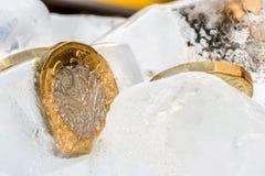 Djupfryst ny britt ett pundmynt upp nära makro inom iskuber Royaltyfri Bild