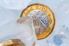 Djupfryst ny britt ett pundmynt upp nära makro inom iskuber Royaltyfri Fotografi