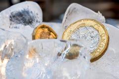 Djupfryst ny britt ett pundmynt upp nära makro inom iskuber Fotografering för Bildbyråer