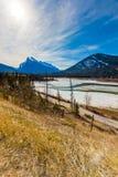 Djupfryst pilbågeflod av den Banff nationalparken Arkivfoton