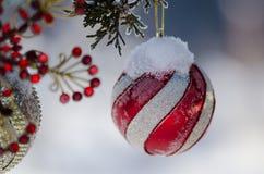 Djupfryst röd randig julprydnad som dekorerar ett snöig utomhus- träd Arkivbilder