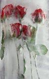 djupfryst ro Royaltyfria Bilder