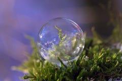 Djupfryst såpbubbla - nära övre Royaltyfri Foto