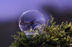 Djupfryst såpbubbla - nära övre Arkivfoto