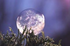 Djupfryst såpbubbla - nära övre Royaltyfria Foton