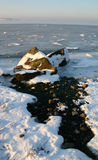 djupfryst shoreline Arkivbilder