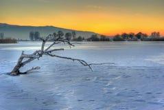 Djupfryst sjö Arkivbilder
