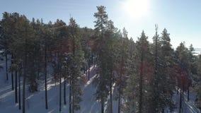 Djupfryst sjö bakifrån träden lager videofilmer