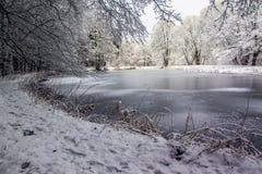 Djupfryst sjö i skogen Fotografering för Bildbyråer