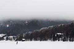 Djupfryst sjö i Slovenien Royaltyfri Foto