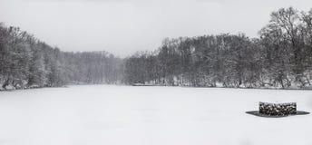 Djupfryst sjö i Zagreb, Kroatien Fotografering för Bildbyråer